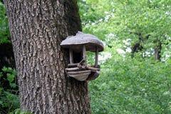 Vogel-Zufuhr lizenzfreie stockbilder