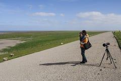 Vogelaar met verrekijker, Birder with binoculars. Man met verrekijker kijkend naar groep vogels in Waddenzee; Man with binocular looking at flock of birds in stock image