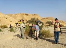 Vogelaars внутри een вади 10 noorden фургон Eilat Израиль; Birdwatchers стоковое изображение