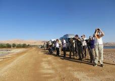Vogelaars bij KM20 Eilat Izrael; Birdwatchers przy km20 Eilat Isra obraz royalty free