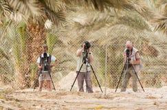 Vogelaars Birdwatchers fotografering för bildbyråer