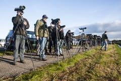 Vogelaars, Birdwatchers stock photos