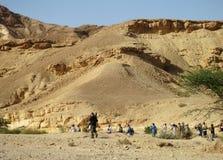 Vogelaars wewnątrz een wadiego dziesięć noorden samochód dostawczego Eilat Izrael; Birdwatchers fotografia stock