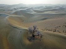 Vogelansicht von Taklamakan-Wüste im Winter lizenzfreie stockfotografie