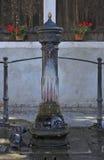 Vogelbad stock afbeeldingen