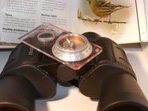 Vogelbeobachtung Stockfotografie