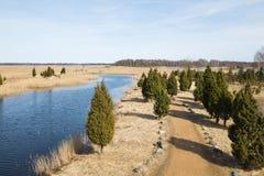 Vogelbeobachtungsplatz im See Kanieris, Lettland 2018 lizenzfreies stockbild