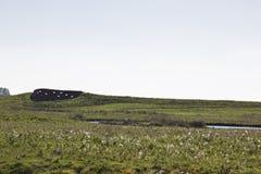 Vogelbeobachtungsschirm auf den Gebieten von Groningen Lizenzfreie Stockfotos