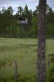 Vogelbeobachtungsturm bei Vaejtjaernen in Vaermland, Schweden Lizenzfreie Stockfotos