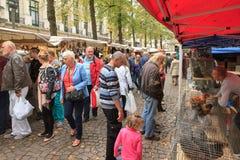 Vogelenmarkt Antwerpen Stockbild