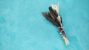 Vogelfederdekoration auf Knickentenhintergrund lizenzfreie stockfotos
