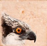 Vogelfliese. Lizenzfreies Stockbild