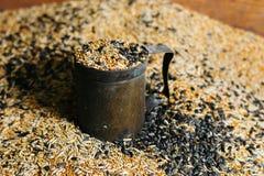 Vogelfutterkorn goss herein einen Weinlesebecher Stockfotografie
