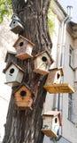 Vogelhäuser auf einem Baum Lizenzfreies Stockbild