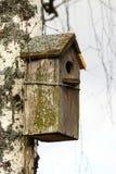 Vogelhaus Stockbild