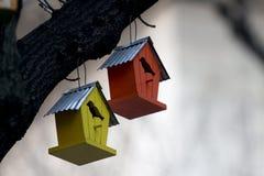 Vogelhaus lizenzfreies stockfoto