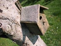 Vogelhaus auf Baum Stockbild