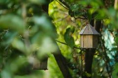 Vogelhaus auf Baum lizenzfreie stockfotos