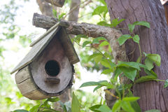Vogelhaus auf dem Baum Lizenzfreies Stockbild