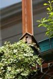 Vogelhaus auf Fenster lizenzfreie stockfotografie
