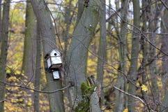 Vogelhaus, das an einem Baum im Wald hängt Lizenzfreies Stockbild