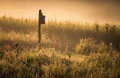 Vogelhaus, das in einer nebelhaften Wiese steht Stockfoto