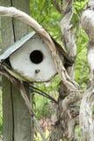 Vogelhaus im Ast auf Beitrag Stockbild