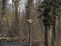 Vogelhaus im Wald Stockfotografie