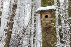 Vogelhaus im Winter-Wald Lizenzfreies Stockbild