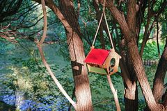 Vogelhaus mit einem roten Dach, das an einem Baum nahe dem Fluss hängt lizenzfreies stockfoto