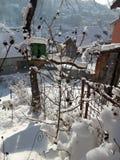 Vogelhaus mit Schnee und kleines Holzhaus in meinem Biogarten lizenzfreie stockfotografie