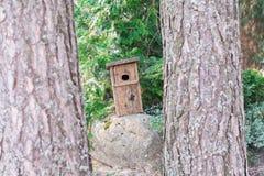Vogelhaus steht auf einem Stein lizenzfreies stockbild