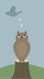 Vogelhecks auf Eule Lizenzfreies Stockbild