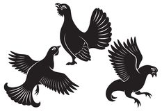 Vogelhoen Royalty-vrije Stock Fotografie