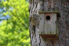 Vogelhuis Stock Foto's