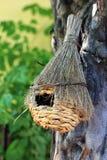 Vogelhuis stock afbeelding