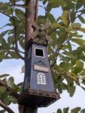 Vogelhuis Royalty-vrije Stock Foto's