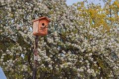 Vogelhuis in de bloeiende tuin royalty-vrije stock fotografie