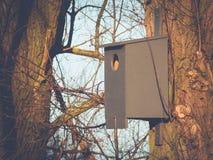 Vogelhuis in de Ochtendzon Royalty-vrije Stock Fotografie