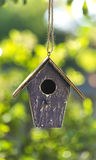 Vogelhuis in de Zomerzonneschijn & Groene Bladeren Stock Foto's