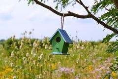 Vogelhuis in een boom Stock Afbeeldingen