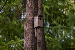 Vogelhuis in een de zomerpark stock foto