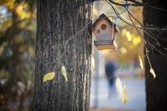 Vogelhuis het hangen op een boom in het de herfstpark royalty-vrije stock fotografie