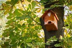 Vogelhuis in het park stock afbeelding