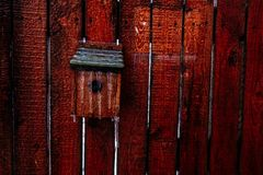 Vogelhuis in ijs toe te schrijven aan het bevriezen regen wordt behandeld die royalty-vrije stock foto's