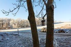Vogelhuis met bevroren contryside Royalty-vrije Stock Afbeelding