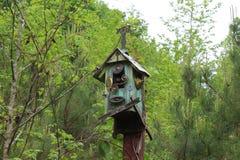Vogelhuis met slang die uit eruit zien Stock Fotografie