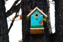 Vogelhuis op een boom II Stock Foto