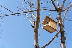 Vogelhuis op een boom over blauwe hemel stock afbeeldingen
