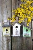 Vogelhuis op oude houten omheining stock foto